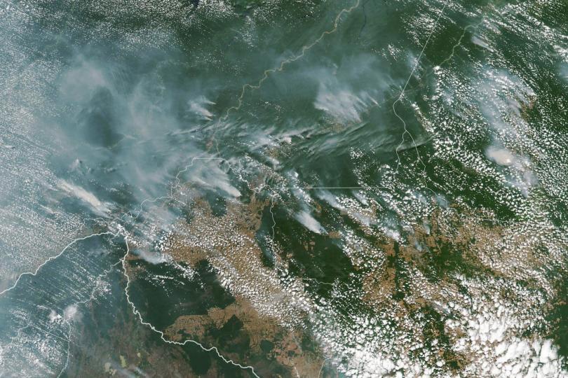 Бразилската тропическа гора в Амазонка търпи рекорден брой пожари тази