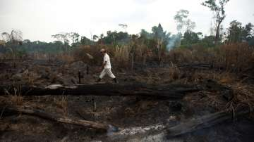 Бразилия е отворена за международна помощ за Амазония