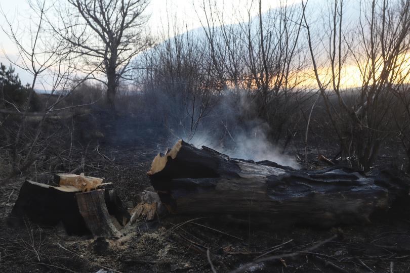 снимка 2 Потушен е пожарът, който обхвана част от Драгоманското блато (Снимки)