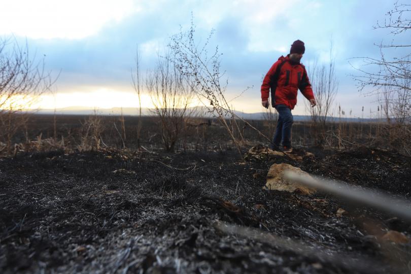 снимка 3 Потушен е пожарът, който обхвана част от Драгоманското блато (Снимки)