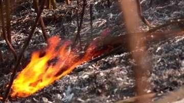 Пожар затвори обходния път на Пловдив за час