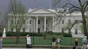 Червеношийки свиха гнездо пред вратата на Белия дом