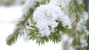 Смолян осъмна в сняг