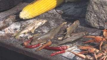 Празник на Тетевенската саламура събра почитатели на рибното ястие
