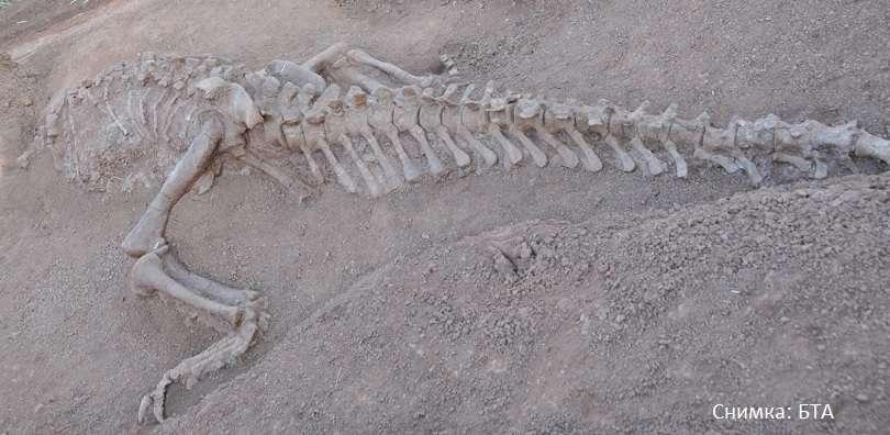 китай откриха два динозавъра 180 милиона години