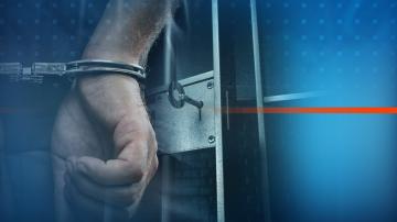 Шестима арестувани при мащабна акция в Берковица и село Арчар