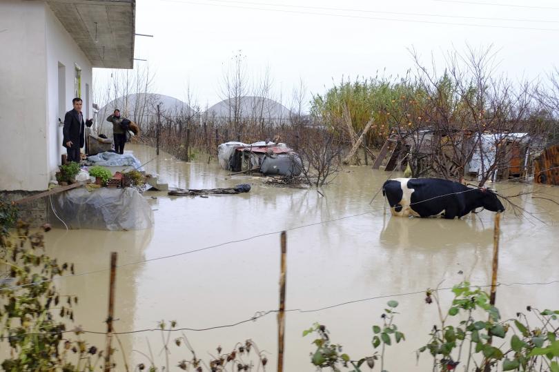 евакуация албания заради наводненията