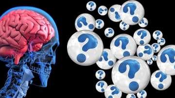 Екстракт от охлюв може да забави развитието на Алцхаймер?