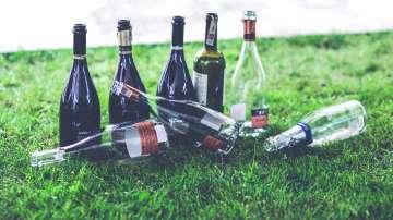Трябва ли да има пълна забрана за пиенето на алкохол в парковете?