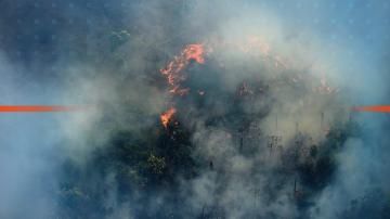 Бразилската армия се включва в гасенето на пожарите в Амазония