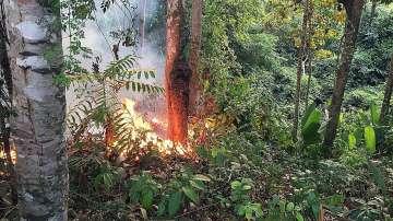 Макрон: Пожарите в Амазония са международна криза