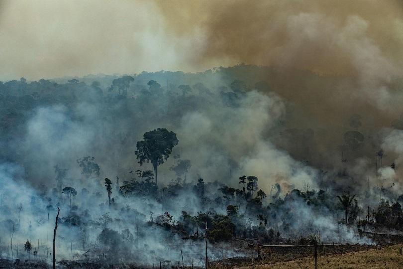 Опустошителните пожари в Амазония продължават да горят. Около 44 000