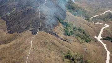Броят на пожарите в Амазонската джунгла продължава да расте