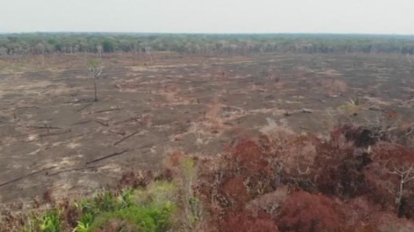 Снимка: Болсонаро ще пропусне форум за Амазония заради операция