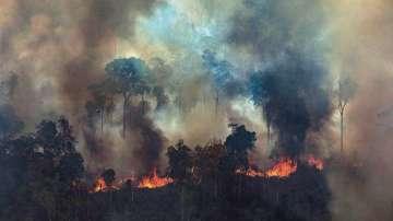 Военни самолети се включват в гасенето на пожарите в Амазония