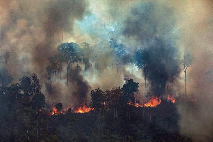 Амазония продължава да гори. Папа Франциск призова католиците да се