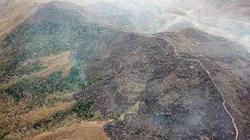 Туск предложи на Бразилия помощ от ЕС за гасенето на пожари