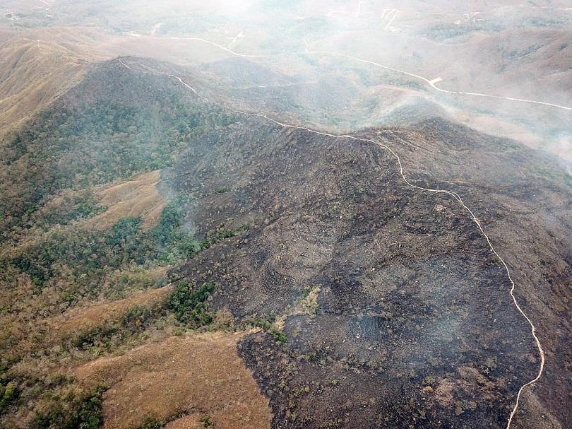 туск предложи бразилия помощ гасенето пожари
