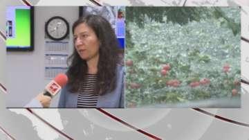 Синоптикът Анастасия Стойчева: През нощта ще превали основно в Източна България