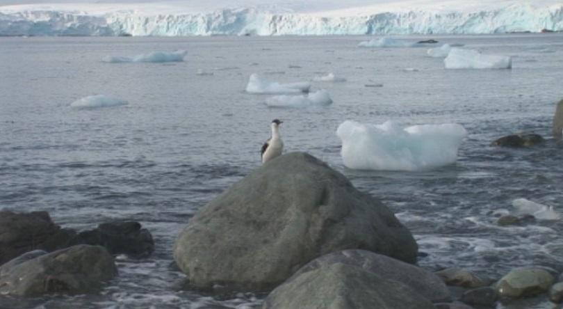 пътят българската експедиция антарктида