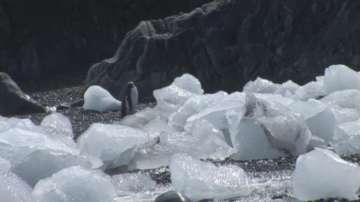 Първият полярник, развял българското знаме на Антарктида