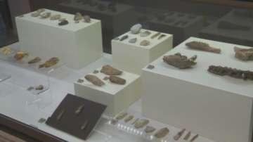 Най-старото сребро и рисунка на 43 хил г от първите хора изложени в НАИМ