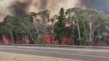 Огненият ад в Австралия: кое е по-ценно - домът или животът