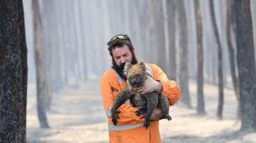 Българи в Австралия за огнената стихия в страната