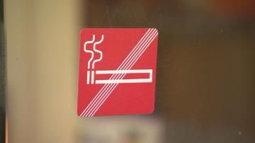 В Австрия въвеждат забрана за пушене в заведенията