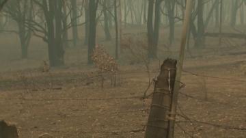 Четири са жертвите на пожара в Австралия