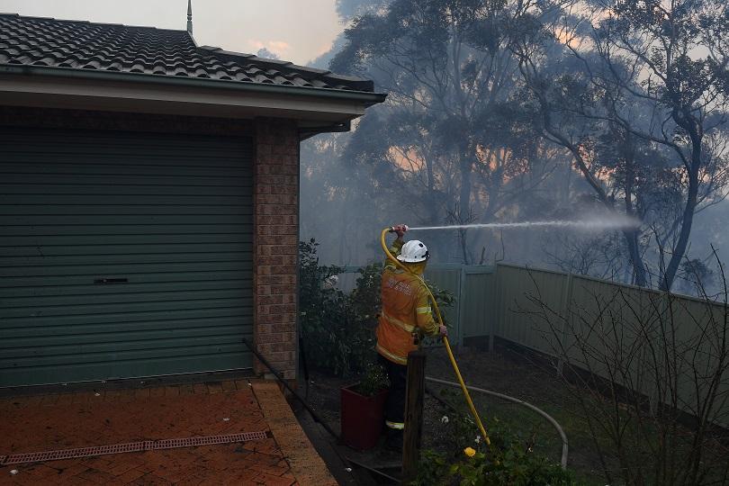 Безпрецедентни горски пожари бушуват в Австралия. Освен че са много