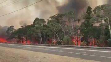 Рекордни горещини в Австралия