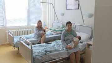 Рекордна раждаемост във Велико Търново за последните 10 години