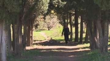 В Стара Загора ще има референдум за бъдещето на парк Бедечка