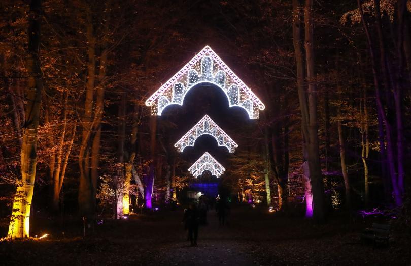 снимка 3 Ботаническата градина в Берлин грейна в коледни светлини (ГАЛЕРИЯ)
