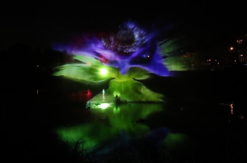 снимка 6 Ботаническата градина в Берлин грейна в коледни светлини (ГАЛЕРИЯ)