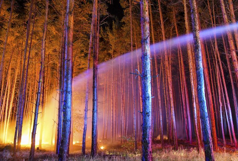 снимка 2  Голям пожар гори край Берлин, евакуирани са 600 жители от близките села