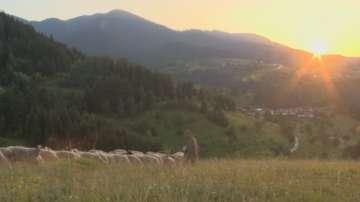 """В """"България от край до край"""": Каква е тайната на Илинденските поляни?"""
