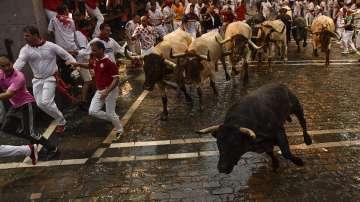Американски писател с книга как се оцелява в надбягването с бикове