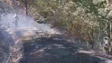 Пожар гори до ЖП тунел край Дупница