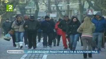 Над 250 са свободните работни места в бюрото по труда в Благоевград