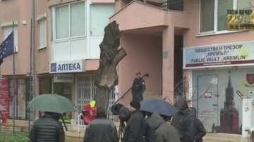 Барикадиралият се мъж в Стрелбище е стрелял по полицаи