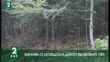 Забранява се лесовъдската дейност във вековните гори