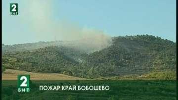 Голям пожар гори край село Сопово, община Бобошево