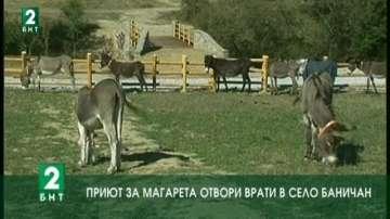 Приют за магарета отвори врати в село Баничан