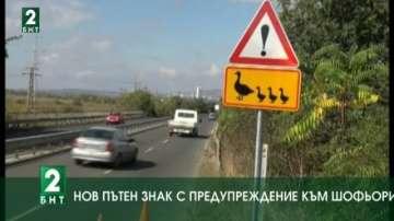 Нов пътен знак: Патица с малките