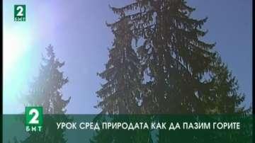 Урок сред природата как да пазим горите