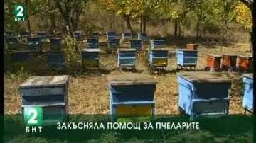 Закъсняла помощ за пчеларите