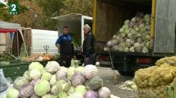 Добра реколта от зеле тази есен в Благоевградска област