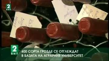400 сорта грозде се отглеждат в базата на Аграрния университет в Пловдив